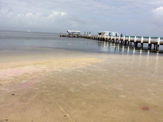 Bokeelia, FL: View of pier from Capt'n Con's