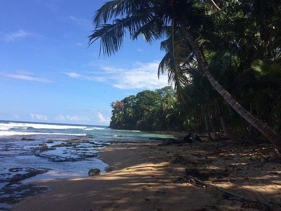 Punta Uva, Costa Rica: photo0.jpg
