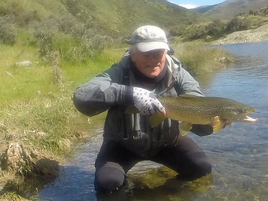 Wanaka, Nieuw-Zeeland: A fit fighting trout, photographed and returned