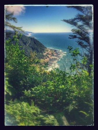 Florence, OR: Coastal Tours