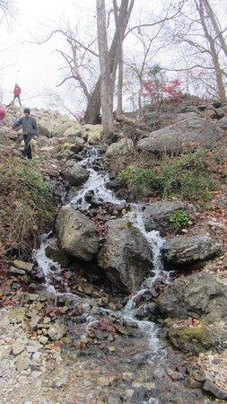 Branson, MO: Small waterfall near the hatchery