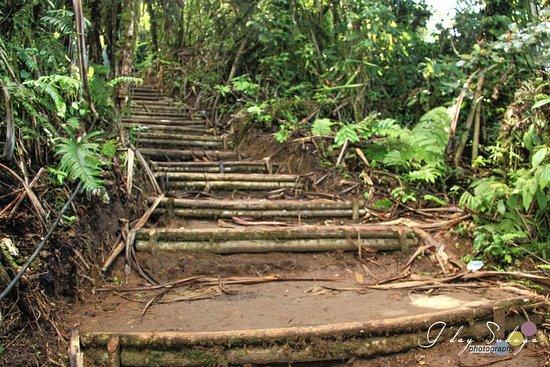 จิมบารัน, อินโดนีเซีย: Stair to the top of lempuyang temple