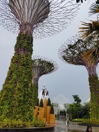 gardens by the bay the entrance plaza