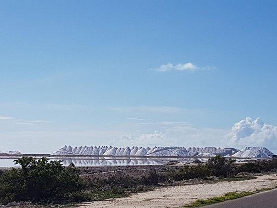Kralendijk, Bonaire: Mountains of salt