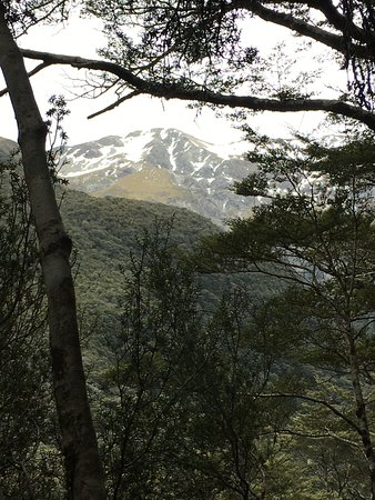 Arthur's Pass National Park, New Zealand: Snow caps from the lookout path