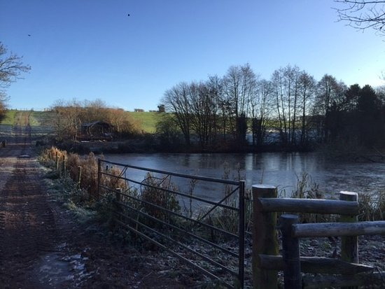Docklow, UK: tim is building a shelter to sit by the water
