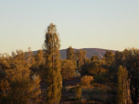photo7 jpg picture of desert gardens hotel ayers rock resort yulara tripadvisor