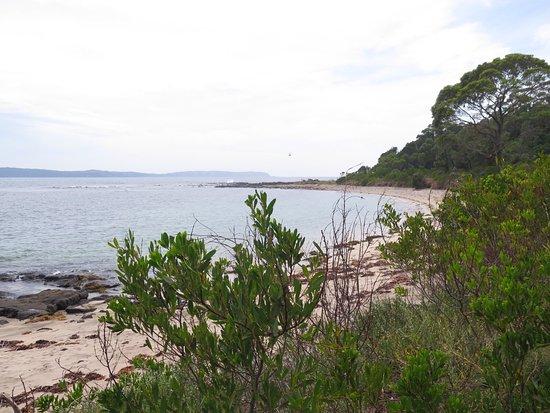 Broulee, Australia: Ocean views