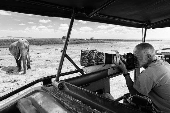 Fourways, Sudáfrica: Amboseli Photo Safari