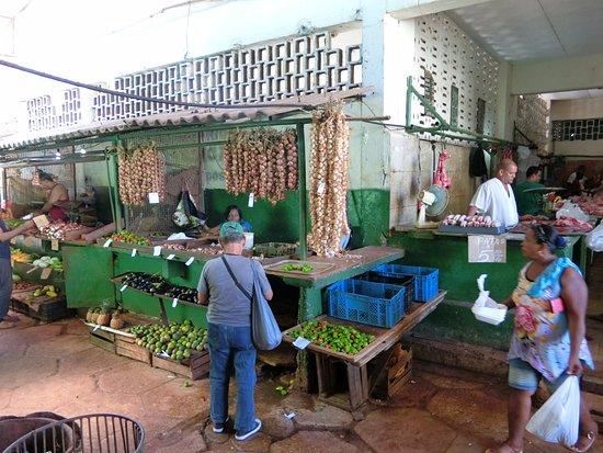 Mercado Agropecuario Egido