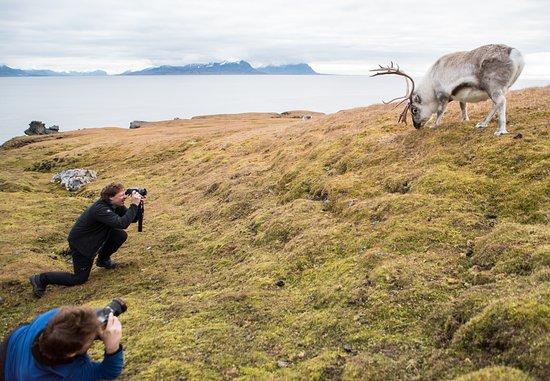 Fourways, Sudáfrica: Svalbard Photo Expedition