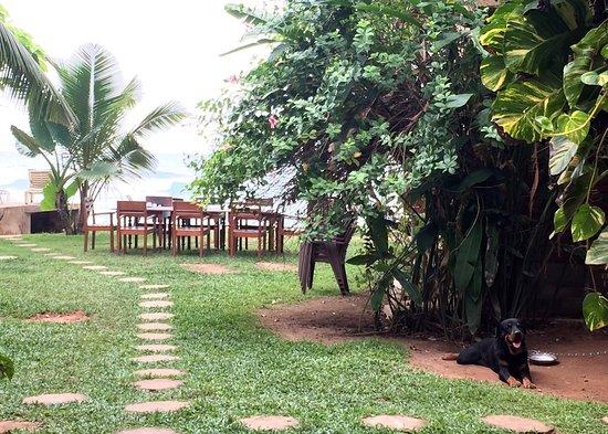 Summer Breeze Guest House: photo1.jpg