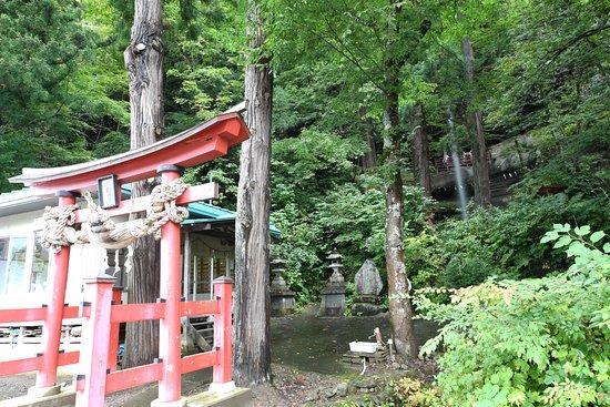 Nishimeya-mura, Japan: 道路沿いの鳥居越しに
