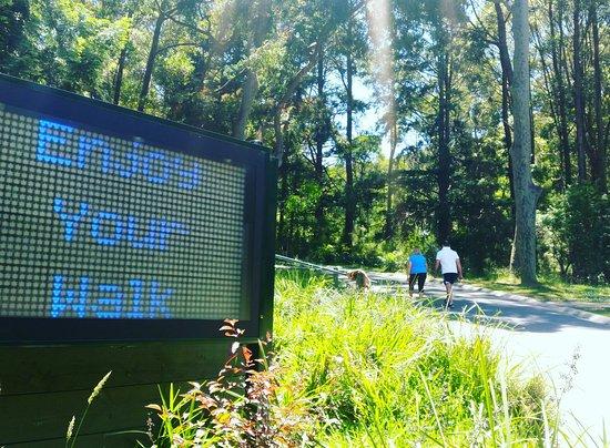 Ferntree Gully, Австралия: IMG_20161207_183151_large.jpg