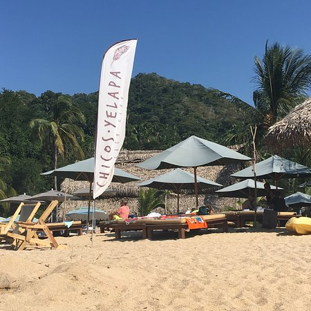 6bdfecf7be Chicos Yelapa Image. Chicos es el Mejor lugar de la playa Se come delicioso  ...