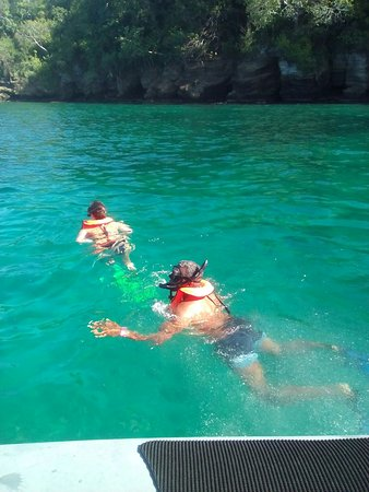 Grenada Seafaris : IMG-20161206-WA0003_large.jpg