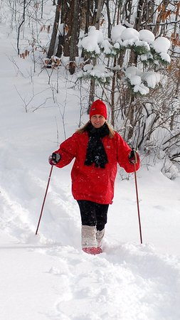 Boyne City, MI: Snowshoeing is a popular activity in winter.