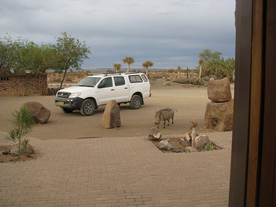 Keetmanshoop, Namibia: Friendly wildlife coming to say Hello!