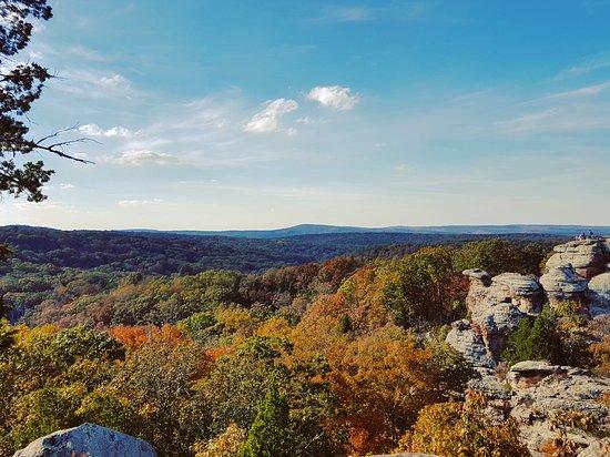 Harrisburg, IL: Autumn