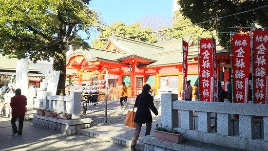 Gifu, Japonia: DSC_0333_large.jpg