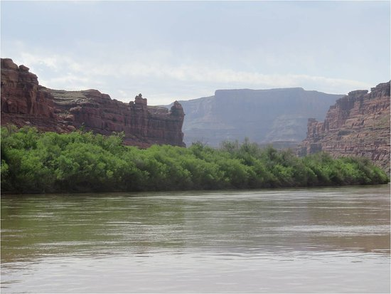 Moab Adventure Center - Day Tours: On the Colorado River on a jet boat