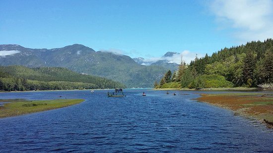 Telegraph Cove, Canada : Knight Inlet