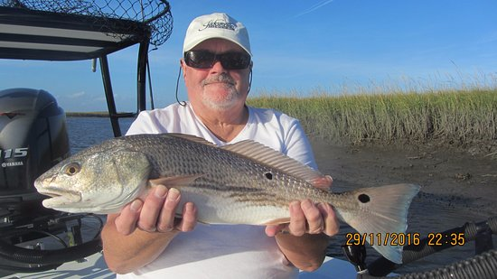 Neptune Beach, FL: Red fish caught on my first trip with Cpt. Buzz