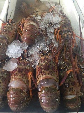 Vitoria, ES : lagostas enormes aos sábados