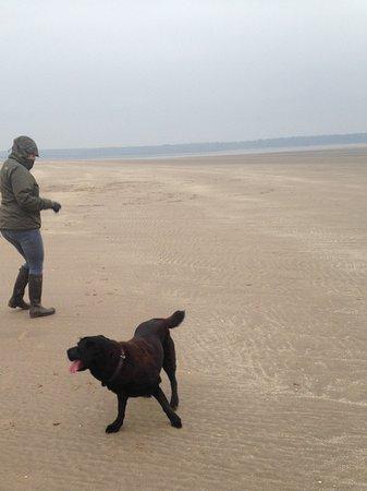 Kingsbarns, UK: Walking on the beach at St Andrews