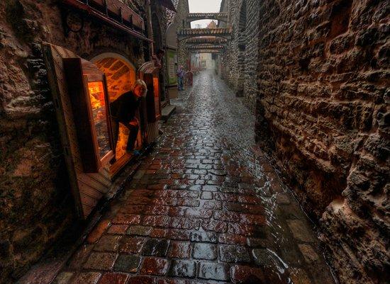 ST. Catherine's Passage: Майский дождь