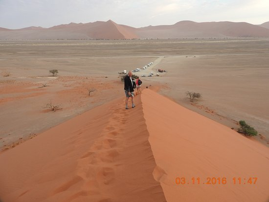 The Top Of The First Peak At Dune 45 Picture Of
