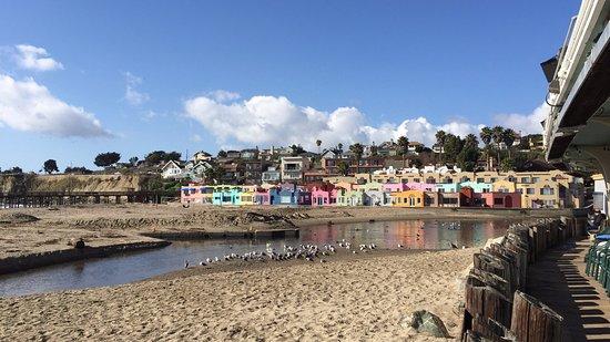 New Brighton State Beach: Capitola