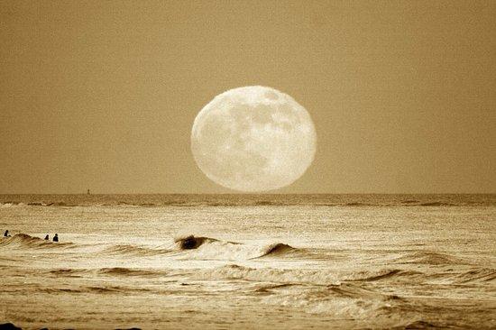 Pawleys Island, SC: Full Moon over Pawleys!