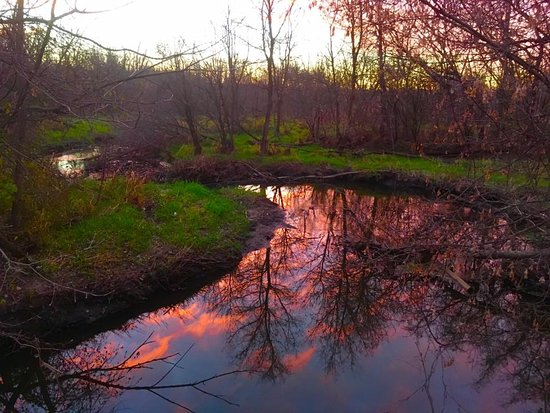 Elm Creek Park Reserve: Sunset reflected on Elm Creek