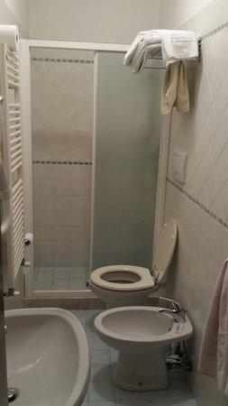 Hotel Al Vagon: Bagno molto pulito , doccia spaziosa.