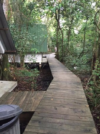 Rio Dulce, Γουατεμάλα: Boardwalks over swampy areas, bring mosquito spray