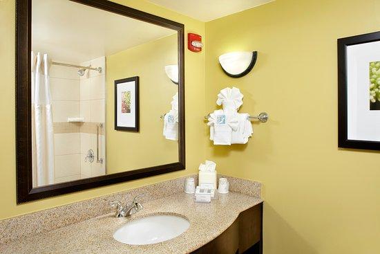 Hilton Garden Inn Tampa East/Brandon: Standard bathroom