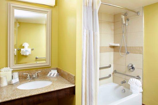 Hilton Garden Inn Tampa East/Brandon: Accessible bathtub