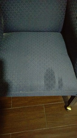 Ukiah, CA: Filthy chair with stain!!!!