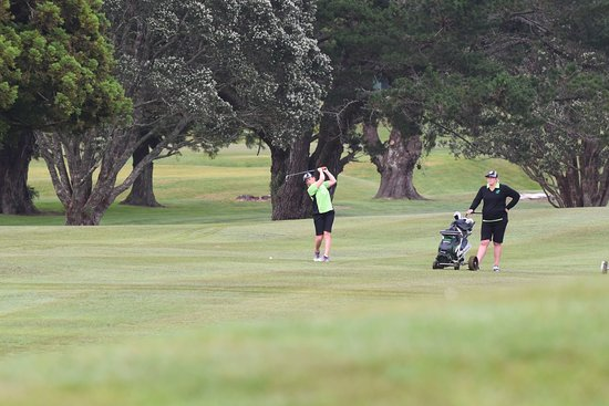 New Plymouth, Nueva Zelanda: tree lined fairways