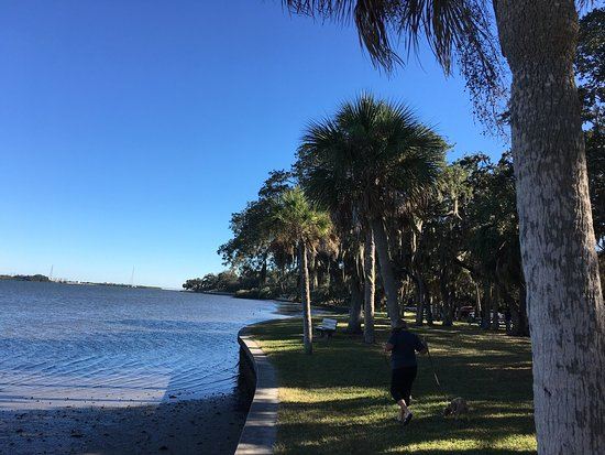 Safety Harbor, FL: A walk in the park