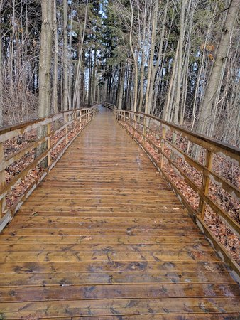 Orangeville, Kanada: Pleasant boardwalks protect the environment