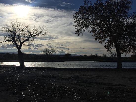 Isleta, NM: A beautiful dawn walk around the lake