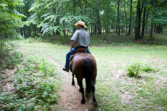 Hume, VA: Guided Trail Rides at Marriott Ranch
