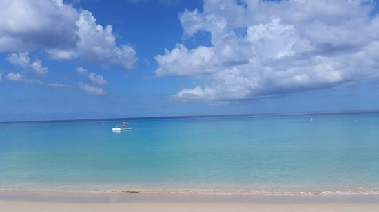 Paynes Bay, Barbados: The view from our garden