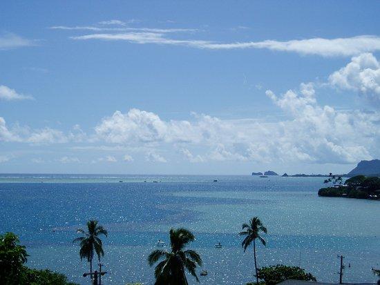 Kaneohe, HI: Gorgeous day, light water is the sandbar area!