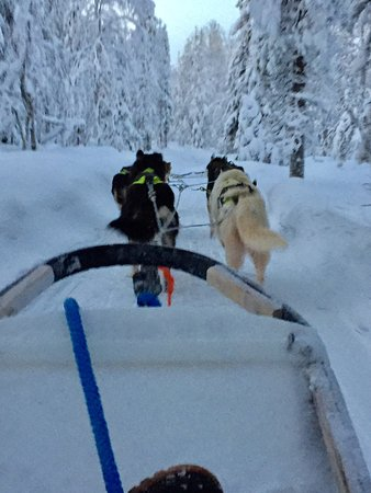 Luosto, Finlande : photo0.jpg