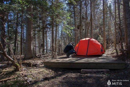 Sainte-Flavie, Canada: L'un de nos dix sites de camping rustique