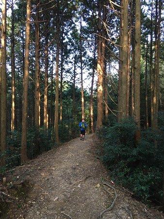 Регион Кинки, Япония: photo9.jpg