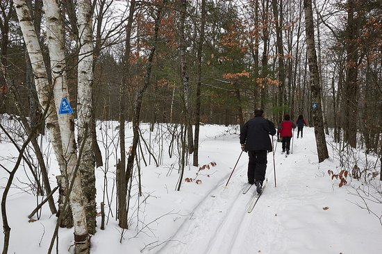 Cross Country Skiing the Cadillac Pathway